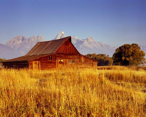 Moulton barn on Mormon's row