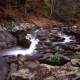 Smokey Mountain Stream II
